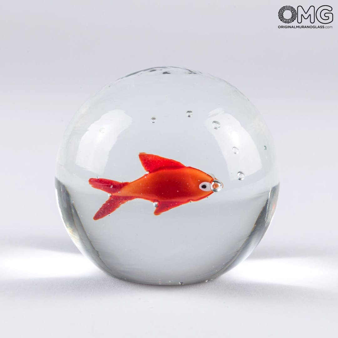 Home Aquarium Decorations Betta Fish Tank Setup Ideas That